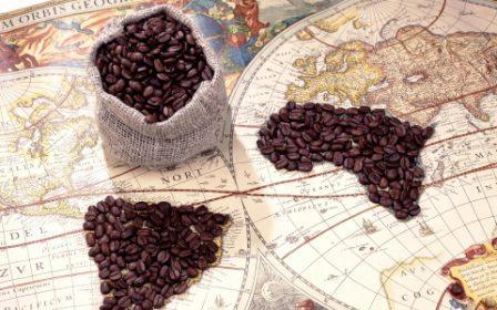 Káva- históris