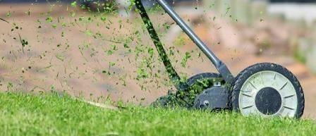 Kosenie-trávy