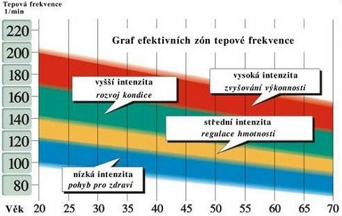 Efektivna - tepová-frekvencia